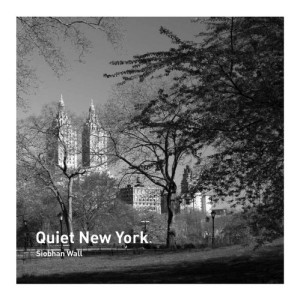 Cover of Quiet New York
